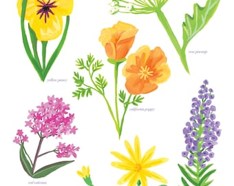 Bright Colorful Floral Print, San Francisco Bay Area Wildflowers, Botanical Illustration, Flower Art Print 8x10