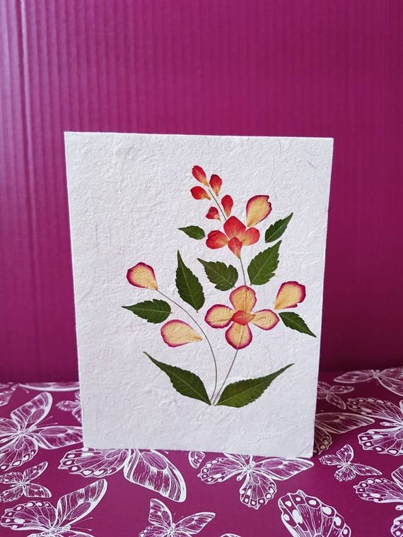 Real Pressed flower card single plant design