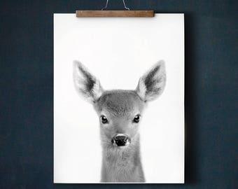 Deer print, Baby animal prints, PRINTABLE art, Woodland nursery, Baby deer, Nursery decor, Animal art, Nursery wall art, Fawn print