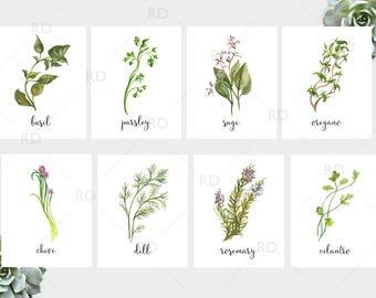 Herb Watercolor Prints - PRINTABLE Wall Art / Herb printables / Herb print / Dill, Parsley, Rosemary, Sage, Basil, Chive, Cilantro, Oregano