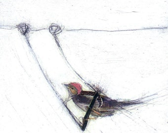 Bird Painting Collage - On a Swing with a Red Hat