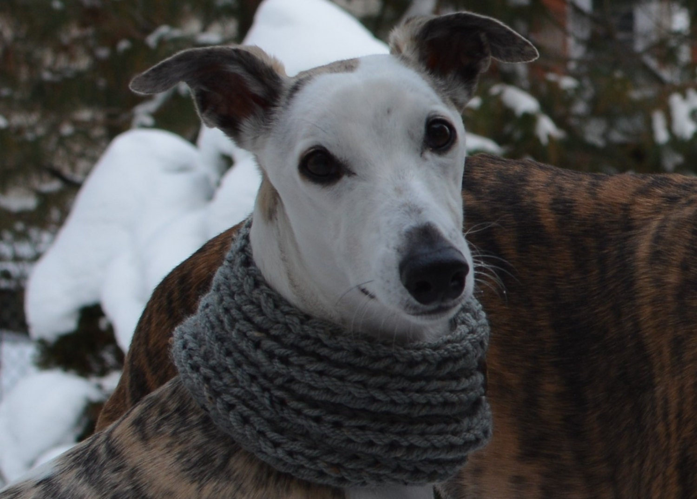 Instant Download Greyhound Scarf Knitting Pattern Pattern PDF PDF ...