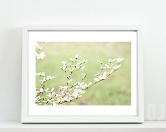 Tree Branch, Photography, Nature Photography Print, leaves photo, Mint Green, Fine Art Photography, Nature Print, Wall art, Home Decor