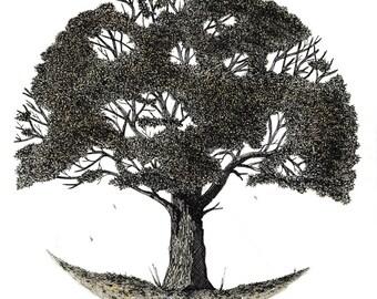 Autumn tree, 3/4 series