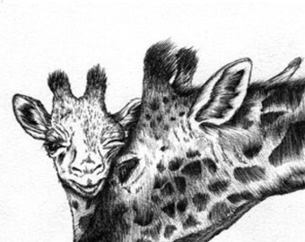 Baby Giraffe and Mother Print Hand Drawn Original Illustration