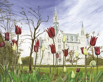 Tulips and the Clock Tower