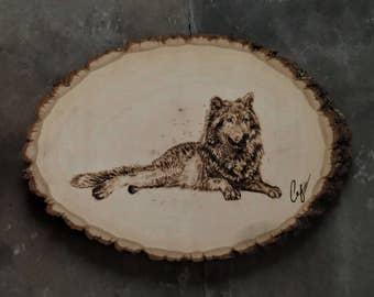 Wood-Burning: Resting Gray Wolf