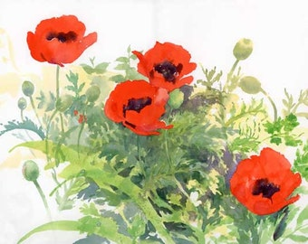 Poppies - Archival Print of a Watercolor