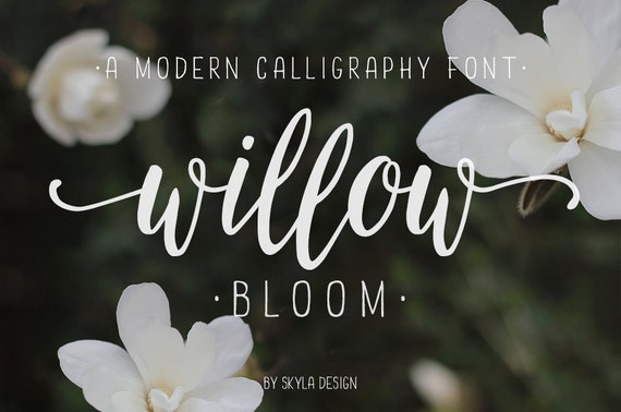 Modern calligraphy font calligraphy typeface wedding font
