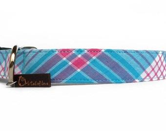Teal blue plaid dog collar/ Scottish Tartan pattern pink blue dog collar