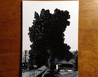 "Big Tree and House in Portland, Oregon - 5x7"" Art Print"
