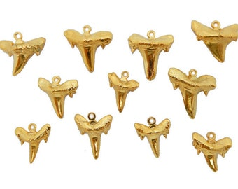 Real Shark Tooth Pendant Charm Dipped in a Layer of Electroplated 24k Gold-- Small Shark Tooth Pendant S3b11-01 Buy 1, 3 or 5 teeth