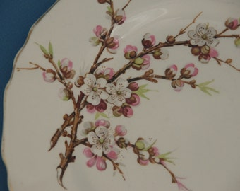 Vintage plate Meakin 'Blossum time' dinner or serving plate with apple blossums. Alread Meakin. England 1940s