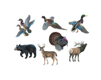 Wildlife Magnets Assorted