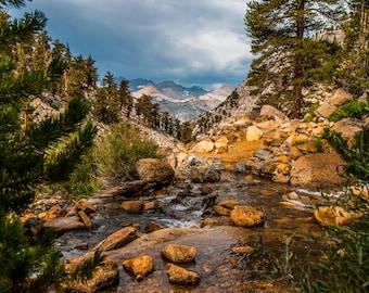 Sierra Stream Print