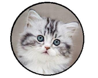 25mm cabochon grey cat