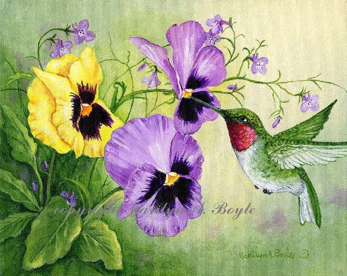 PRINT - PANSIES and HUMMINGBIRD; 8 x 10 inches, Bristol art paper, garden bird, flowers, garden, nature, wings and feathers