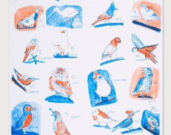 ABC Birds -A3 Print- Risograph