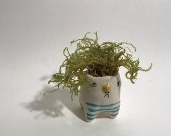 Tiny Creature pot