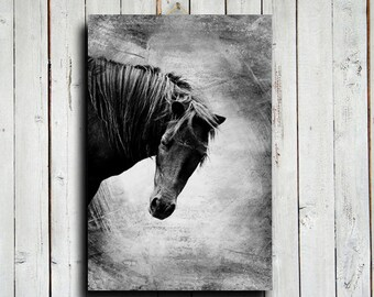 Black Horse - Horse photography - Horse art - Horse decor - Black and White Horse - Black Horse photography - Animal photography