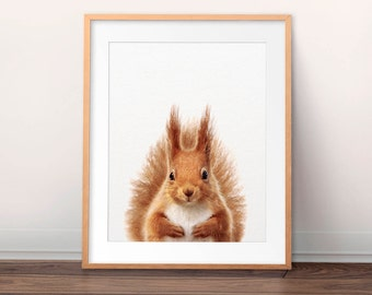 Squirrel Print, Nursery Art, Woodland Animal Wall Art, Squirrel Photo, Red Squirrel, Cute Animals, Nursery Decor, Kids Room Printable Art