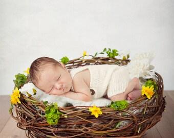Easter Digital backdrop, a digital prop newborn nest with daffodils