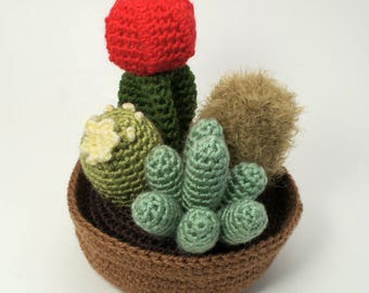 PDF Cactus Collection 1, four realistic potted plant CROCHET PATTERNS