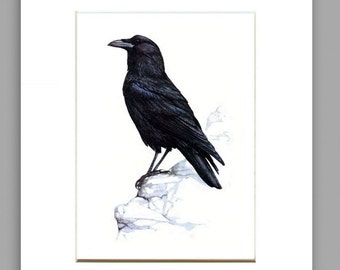 MATTED ARCHIVAL PRINT, Crow Art Print From Original Watercolor, Home Decor Wall Art, Crow Wall Decor Art Print