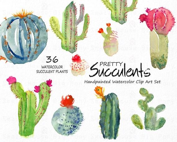 Watercolour Floral Clipart. Handmade, watercolour clipart, wedding diy elements, flowers - Pretty Succulents