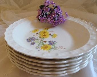 Vintage TAYLOR SMITH TAYLOR Four Plates & Six Bowls
