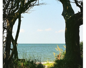 Springer's Point Passage, Ocracoke Island, Outer Banks, North Carolina Photography - Beach, Coastal Home Decor Fine Art Print or Note Cards