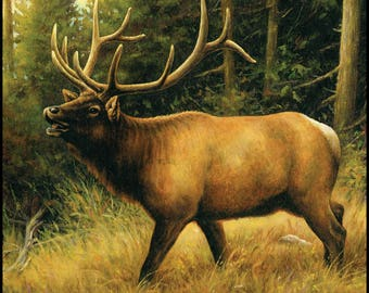 Penny Rose Majestic Digital Panel With El# PD6480R-ELK. 100% cotton  Free Shipping Full Yard Panel
