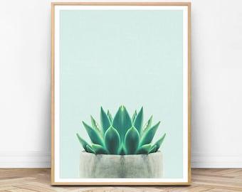 Succulent Print, Green Wall Art, Mint Print, Mint Green, Teal Art, Botanical Print, Plant Print, Succulent Printable, Wall Art set, AQ01