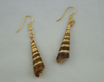 Brown and Gold Sea Shell Earrings