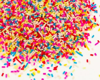 20g Chocolate Sprinkles - Rainbow Bright Kawaii Cute Fake Food Polymer Clay Slime Sprinkles
