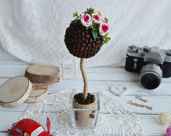 Souvenir Coffee Tree Topiary / Gift Coffee Momentos Coffeetree tree Decoration Valentine's day Gift to mom Gift girl