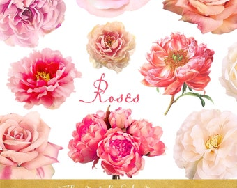 Roses & Peonies Clipart Set - Real Style - INSTANT DOWNLOAD - 20 .PNG Images