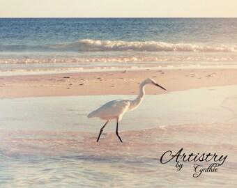 Exotic white bird, Florida bird, Beach Photography, Landscape, Ocean photography, Coastal Wall Art, Nautical