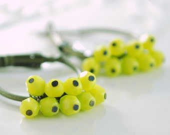 Chartreuse Earrings, Antiqued Brass Hoops, Yellow Green Czech Glass Bead Cluster, Bright Jewelry