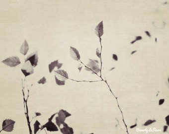 black and white, dreamy, leaves, nature, summer, fine art photography,