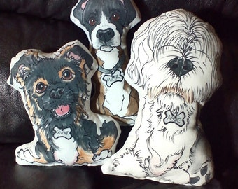 Custom Pet Portrait-Caricature Pillows