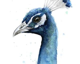 Peacock Watercolor Print, Bird Painting, Animal Watercolor, Exotic Bird Artwork, Giclee Art Print
