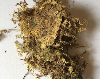 Natural moss - craft moss - terrarium moss - garden moss - brown moss - floristry supplies - dry moss - florist supplies
