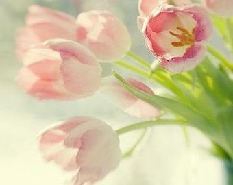 Pink Tulip Photography, Tulip Print, Tulip Wall Art, Floral Art Print, Flower Decor, Nursery Decor, Bedroom Decor