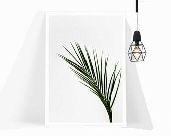 Wall Art,Poster,Print,Home Decor,Office Decor,Living Room Decor,Art Print,Gift,Modern Art,Framed Art,Tropical,Photography,Nordic,Plant