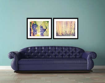 Fall Art - Large Wall Prints - set of 2 photographs - Wine Country Grapes - Sunny Afternoon - oranges purples - autumn home decor