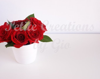 Styled Stock Photography, Roses in a White Vase