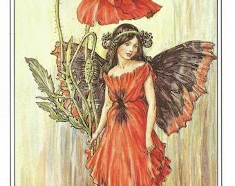The Poppy Fairy by Cicely Mary Barker Flower Fairies Vintage Print 1995 Wall Art Nursery Decor Fairy Print Home Decor Fine Art