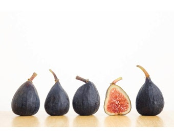 Row of Figs: 8x12 food photograph; printed on canvas, pearl or metallic paper.