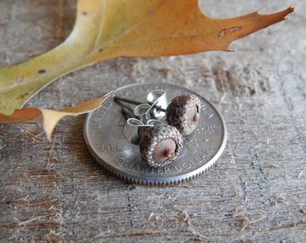 Ultra Small Acorn Miniature Woodland Natural Stud Earrings by Tanja Sova